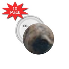 Whippet Brindle Eyes  1.75  Buttons (10 pack)