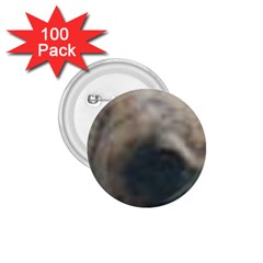 Whippet Brindle Eyes  1.75  Buttons (100 pack)