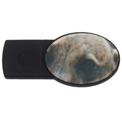 Whippet Brindle Eyes  USB Flash Drive Oval (1 GB)