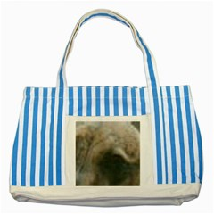 Whippet Brindle Eyes  Striped Blue Tote Bag