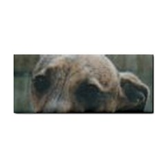 Whippet Brindle Eyes  Cosmetic Storage Cases