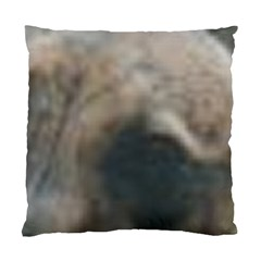 Whippet Brindle Eyes  Standard Cushion Case (Two Sides)