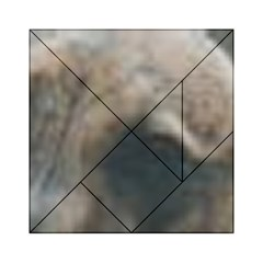 Whippet Brindle Eyes  Acrylic Tangram Puzzle (6  x 6 )