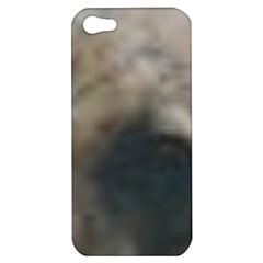 Whippet Brindle Eyes  Apple iPhone 5 Hardshell Case