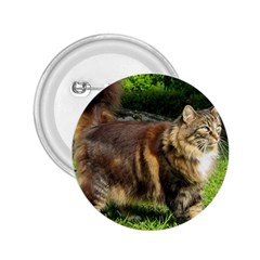 Norwegian Forest Cat Full  2.25  Buttons