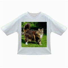 Norwegian Forest Cat Full  Infant/Toddler T-Shirts