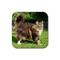 Norwegian Forest Cat Full  Rubber Coaster (Square)
