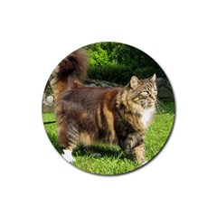 Norwegian Forest Cat Full  Rubber Round Coaster (4 pack)