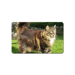 Norwegian Forest Cat Full  Magnet (Name Card)