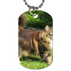 Norwegian Forest Cat Full  Dog Tag (Two Sides)