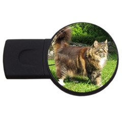 Norwegian Forest Cat Full  USB Flash Drive Round (1 GB)