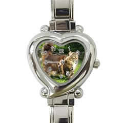 Norwegian Forest Cat Full  Heart Italian Charm Watch