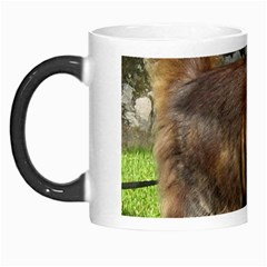 Norwegian Forest Cat Full  Morph Mugs