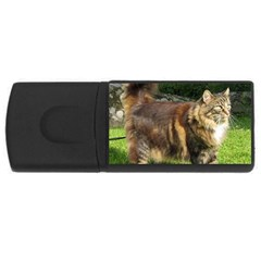 Norwegian Forest Cat Full  USB Flash Drive Rectangular (4 GB)