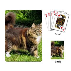 Norwegian Forest Cat Full  Playing Card
