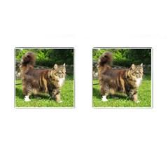 Norwegian Forest Cat Full  Cufflinks (Square)