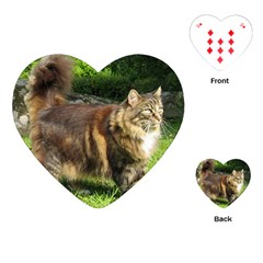 Norwegian Forest Cat Full  Playing Cards (Heart)