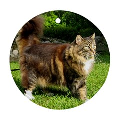 Norwegian Forest Cat Full  Round Ornament (Two Sides)