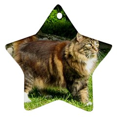 Norwegian Forest Cat Full  Star Ornament (Two Sides)