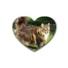 Norwegian Forest Cat Full  Rubber Coaster (Heart)