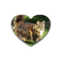 Norwegian Forest Cat Full  Heart Coaster (4 pack)