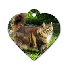 Norwegian Forest Cat Full  Dog Tag Heart (Two Sides)