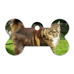 Norwegian Forest Cat Full  Dog Tag Bone (Two Sides)