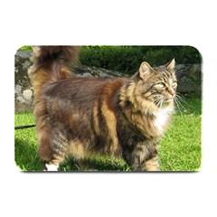 Norwegian Forest Cat Full  Plate Mats