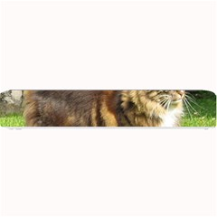 Norwegian Forest Cat Full  Small Bar Mats