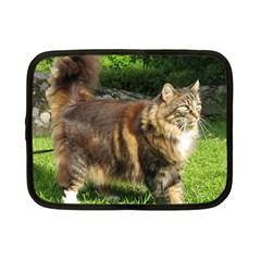 Norwegian Forest Cat Full  Netbook Case (Small)