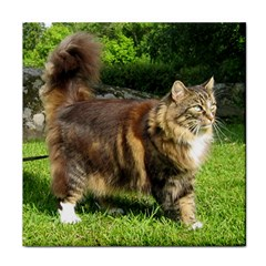Norwegian Forest Cat Full  Face Towel