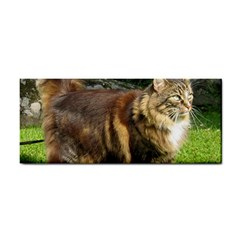 Norwegian Forest Cat Full  Cosmetic Storage Cases