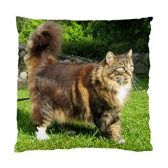 Norwegian Forest Cat Full  Standard Cushion Case (Two Sides)