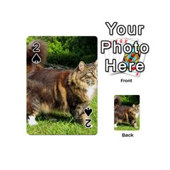 Norwegian Forest Cat Full  Playing Cards 54 (Mini)