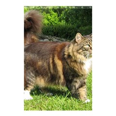Norwegian Forest Cat Full  Shower Curtain 48  x 72  (Small)
