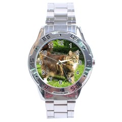Norwegian Forest Cat Full  Stainless Steel Analogue Watch