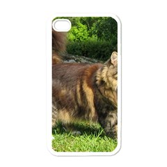 Norwegian Forest Cat Full  Apple iPhone 4 Case (White)