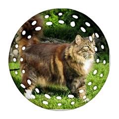 Norwegian Forest Cat Full  Round Filigree Ornament (2Side)