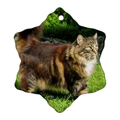 Norwegian Forest Cat Full  Snowflake Ornament (2-Side)