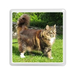 Norwegian Forest Cat Full  Memory Card Reader (Square)