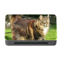 Norwegian Forest Cat Full  Memory Card Reader with CF