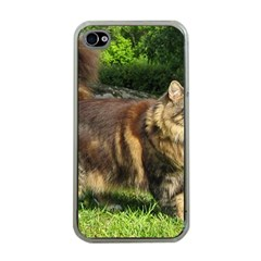 Norwegian Forest Cat Full  Apple iPhone 4 Case (Clear)