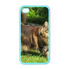 Norwegian Forest Cat Full  Apple iPhone 4 Case (Color)