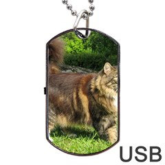 Norwegian Forest Cat Full  Dog Tag USB Flash (Two Sides)