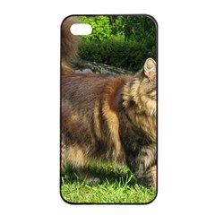 Norwegian Forest Cat Full  Apple iPhone 4/4s Seamless Case (Black)