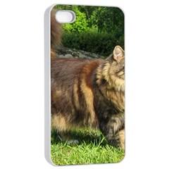 Norwegian Forest Cat Full  Apple iPhone 4/4s Seamless Case (White)