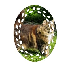 Norwegian Forest Cat Full  Ornament (Oval Filigree)