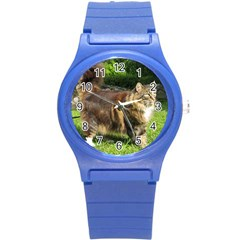 Norwegian Forest Cat Full  Round Plastic Sport Watch (S)