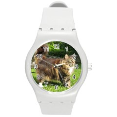 Norwegian Forest Cat Full  Round Plastic Sport Watch (M)