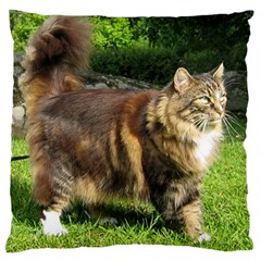 Norwegian Forest Cat Full  Large Cushion Case (Two Sides)